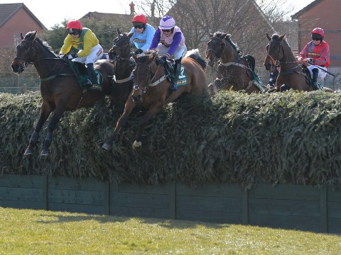 Battlefront death at Aintree shows organisers have Grand National meeting safety 'badly wrong'