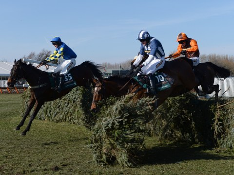 How to pick a Grand National 2014 winner when you don't know anything about horses