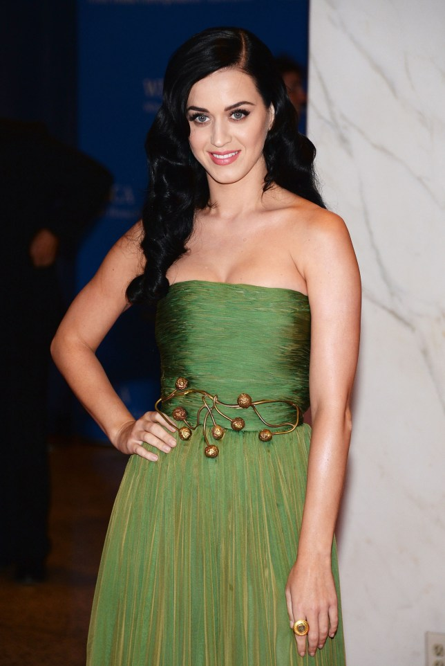 Katy Perry doesn't know why she's attracted to 'broken birds' (Picture: Getty)