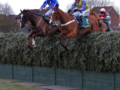 Little Josh put down after Aintree fall during Topham Chase