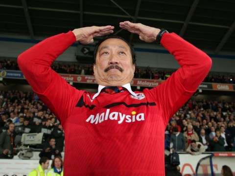 Cardiff ready to spend £25million to boost Premier League campaign