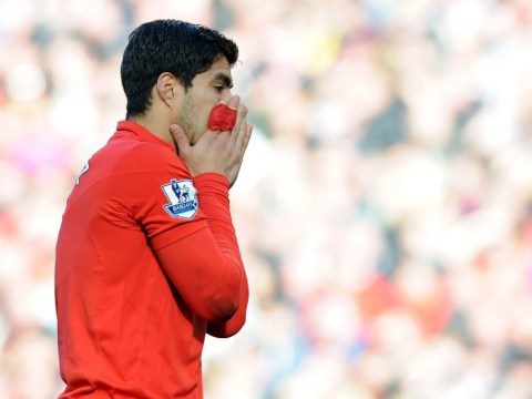 Luis Suarez set for FA investigation after admitting Branislav Ivanovic bite