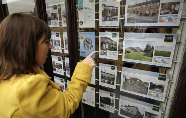 Estate agency window in Essex