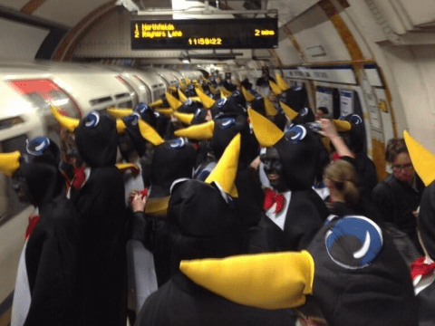 Fans help Hartlepool p-p-p pick up a point after donning penguin outfits
