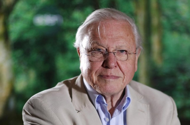Embargoed to 0001 Tuesday May 7. File photo dated 31/05/11 of Sir David Attenborough, who has said that Britons are the most concerned nationality when it comes to wildlife. PA Wire/Press Association Images