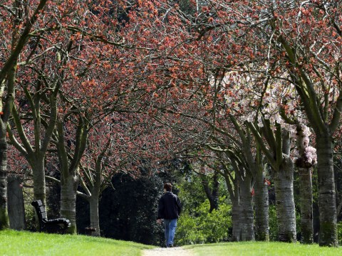 Gallery: Spring weather across the UK – May 1 2013