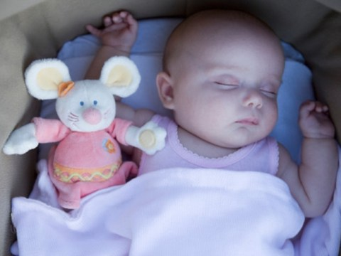 Cot death risk 'increases five-fold when parents share bed with their babies'