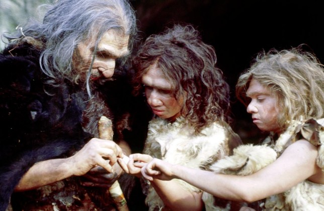 TELEVISION PROGRAMME:  Neanderthal. Channel 4, 9pm. This intriguing two-parter charts the history of early man. Alex Graham's  film asserts that, contrary to popular belief, they were not merely savage hairy cavemen. Centring on a clan living in south-west France some 35,000 years ago, it uses reconstructions to show that the Neanderthals were, in fact, skilled in communication and the construction of tools and weapons. They were also capable of looking after their sick. Things changed drastically, however, when they came into contact with our ancestors, the Cro-Magnons. TX: Monday 4 December 2000 This picture may be used solely for Channel 4 programme publicity purposes in connection with the current broadcast of the programme(s) featured in the national and local press and listings. Not to be reproduced or redistributed for any use or in any medium not set out above (including the intenet or other electronic form) without the prior written consent of Channel 4 Picture Publicity 020 7306 8685 Not to be reproduced or redistributed for any use or in any medium not set out above (including the intenet or other electronic form) without the prior written consent of Channel 4 Picture Publicity 0207 306 8685
