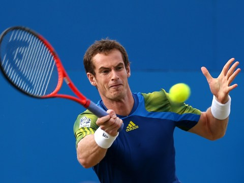 Gallery: Andy Murray v Jo-Wilfred Tsonga semi-final match at Queen's Club