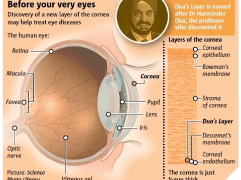 Dua Layer: Previously undetected part of the eye spotted for first time