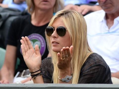 Wimbledon 2013: Maria Sharapova a tense spectator as boyfriend Grigor Dimitrov scraps for tournament life in epic