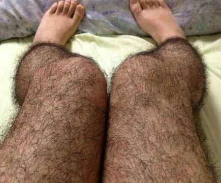 Hairy leggings: road safe, beach savvy, contraceptive fashion wonders