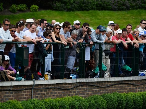 Wimbledon 2013: Tournament chiefs deny betting fears are behind Twitter ban