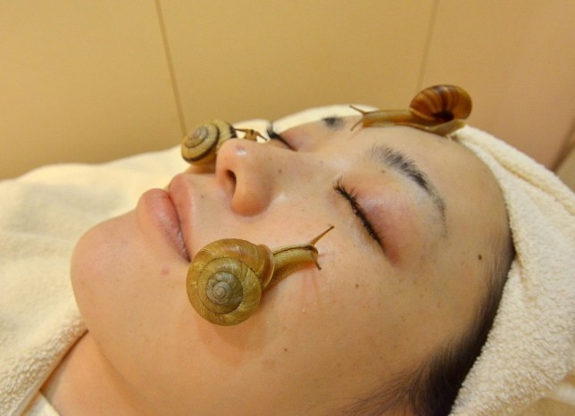 Snails crawling on face beauty treatment in Japan | Metro News