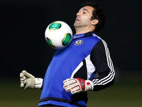 Southampton may move for Tottenham's Heurelho Gomes or Chelsea's Hilario as cover for injured goalkeeper Artur Boruc