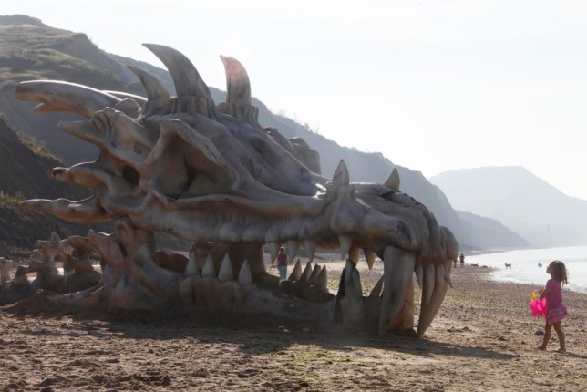 Massive dragon skull washes up on Dorset beach