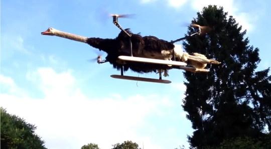 Bart Jenson unveils OstrichCopter – video