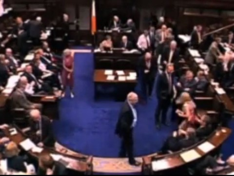 Irish politician apologises for pulling female deputy on to lap during abortion debate
