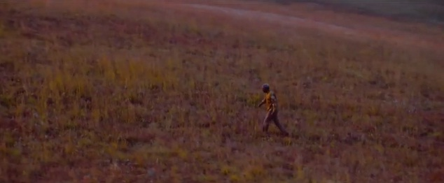 Idris Elba, in character as Nelson Mandela, is shown walking across the South African plains (Picture: YouTube)