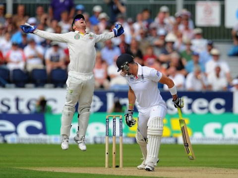 The Ashes 2013: HotSpot inventor calls for protective coating to be removed from bats
