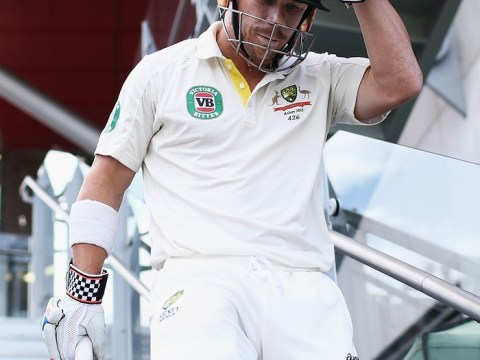 The Ashes 2013: David Warner's controversial innings brought to swift end
