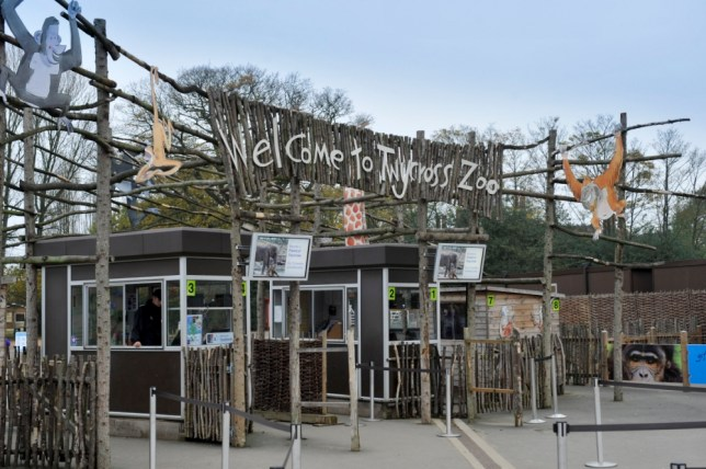 Zoo in lockdown after animal 'incident'