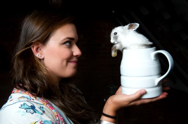 PIC BY MATT STEWART / CATERS NEWS- (PICTURED: Lydia with her animals) - A 22-year-old who decided an office job is not for her and has learnt the ancient art of taxidermy and now spends her days treating and stuffing animals. Lydia Harper, 22, from Herefordshire decided upon the unusual career path after spotting a high fashion advert in fashion magazine, Vogue.