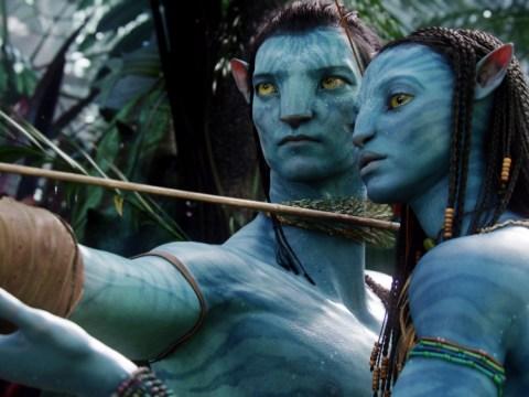 James Cameron reveals plans for trio of Avatar sequels