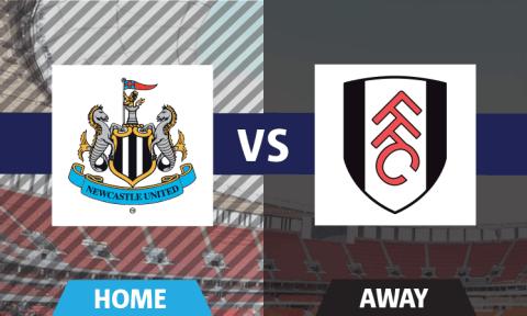 Newcastle United vs Fulham fan's view: Hatem Ben Arfa at his devastating best