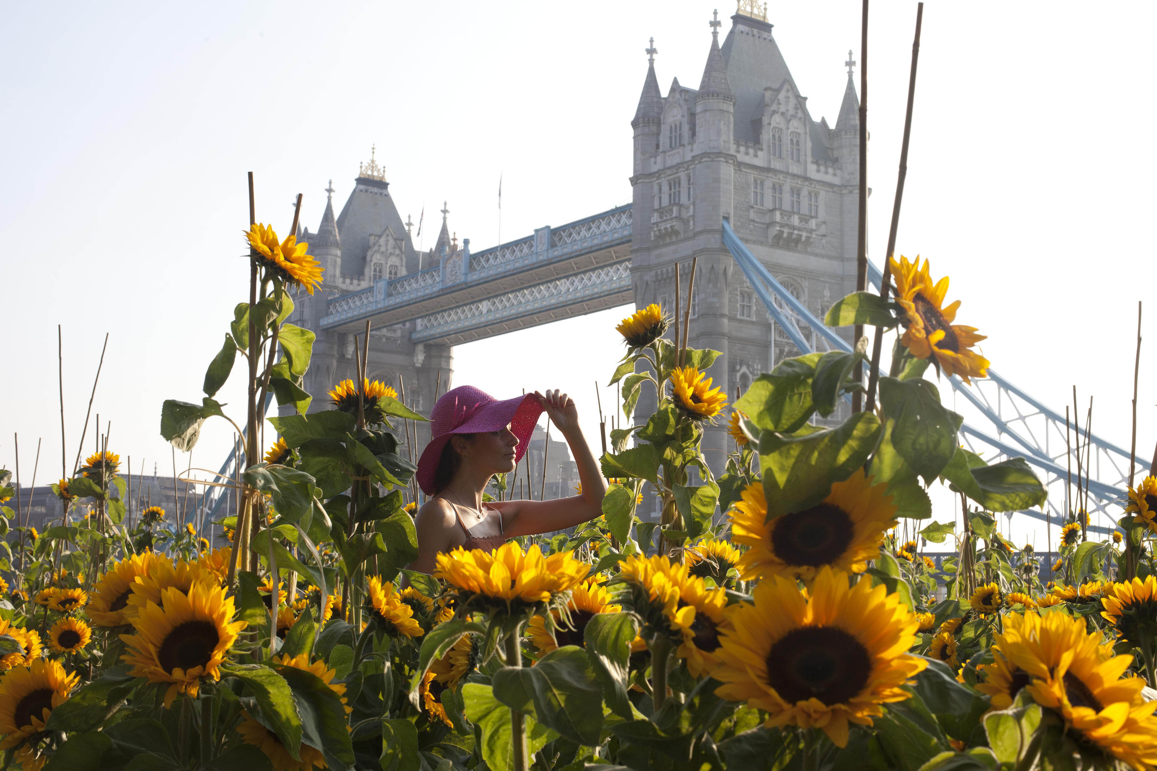Gallery: Indian summer across the UK