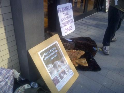 Anti-fur protesters accuse designer chain of 'breaking promises'