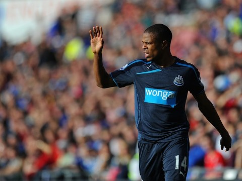 Loic Remy transfer snub revealed by Newcastle boss Alan Pardew