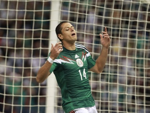 Tottenham prepare January move for Manchester United striker Javier Hernandez