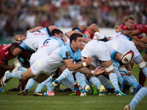 Mike Phillips sacked by Bayonne after being accused of turning up for training drunk