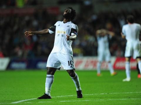 Wilfried Bony will get Swansea back on track against Sunderland after tough start