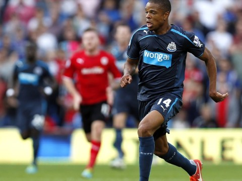 Newcastle boss Alan Pardew wants to sign Loic Remy on a permanent basis