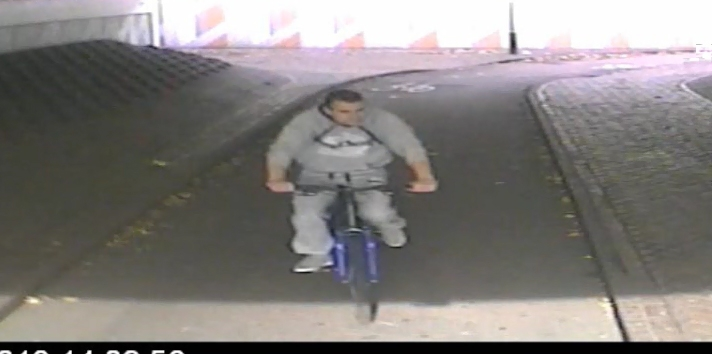 Police launch appeal after autistic teenager punched in the head and robbed while walking through underpass