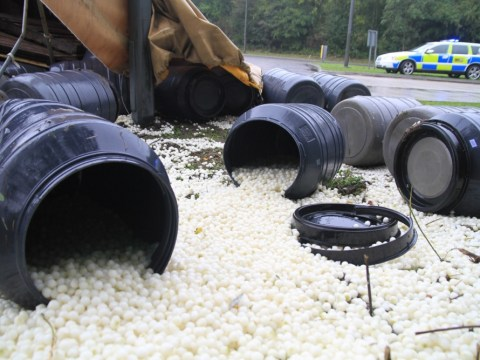 What a pickle! Thousands of pickled onions spill from overturned lorry
