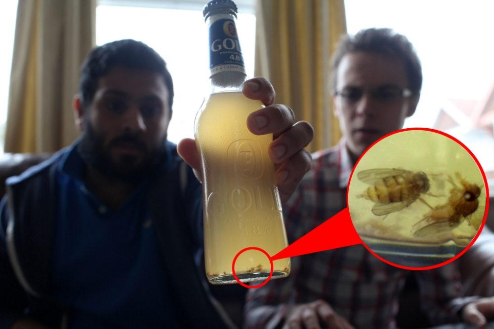 Foster's Gold drinker finds 50 flies floating in a bottle of his favourite tipple he bought from Asda