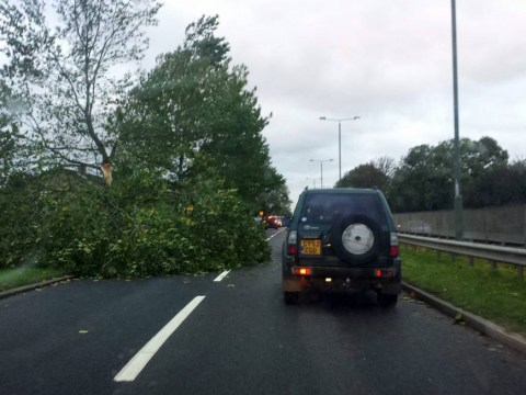 UK storm information: St Jude leaves travel, homes and roads in chaos