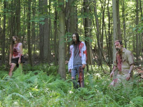 The Wicker Man, The Mummy, Final Cut, The Purge and V/H/S 2: The best horror DVDs for Halloween