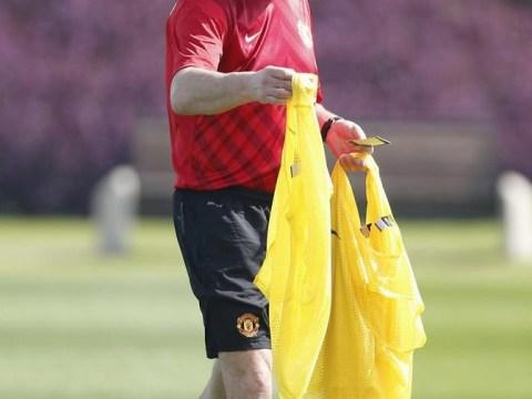 Fulham draft in Rene Meulensteen to help Martin Jol