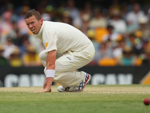 The Ashes 2013-14: Australia bowler Peter Siddle keen on adopting Gabba pig Ash
