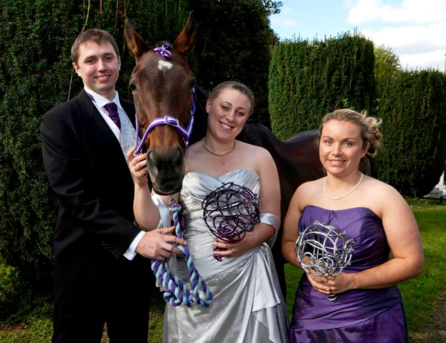 Toffee the horse chosen as bridesmaid after 'giving permission for nuptials to go ahead'