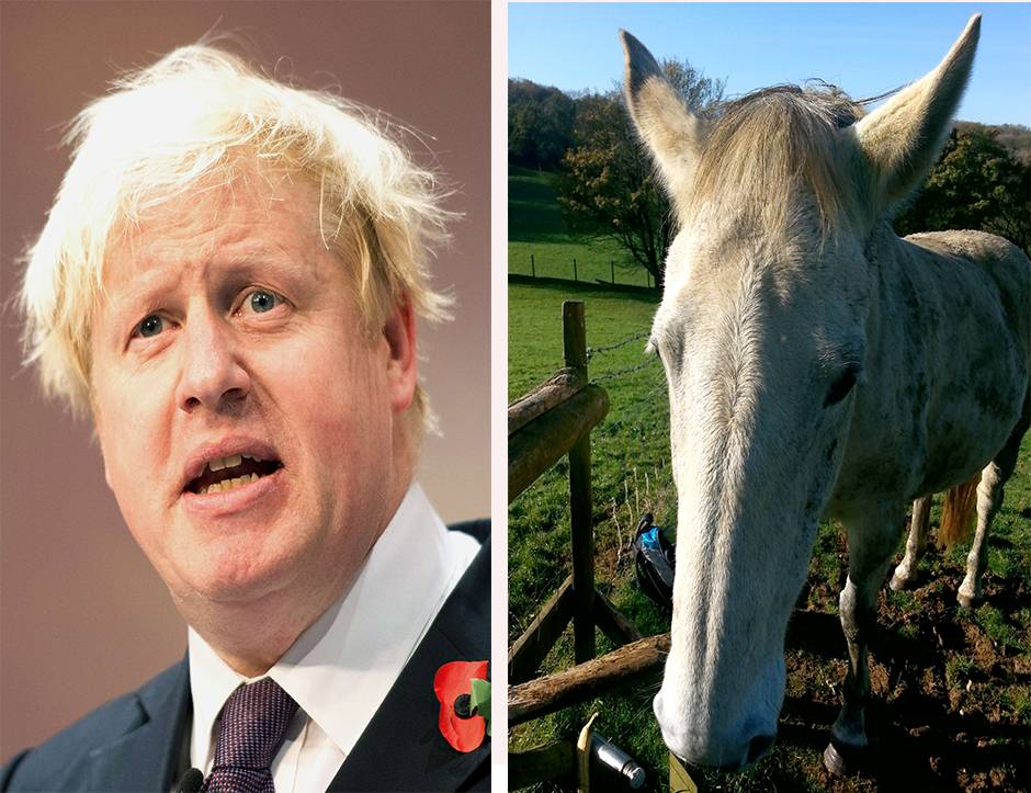 Mare of London: Does this horse look like Boris Johnson?