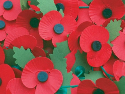 What is the right way to wear a poppy? With pride, says Royal British Legion