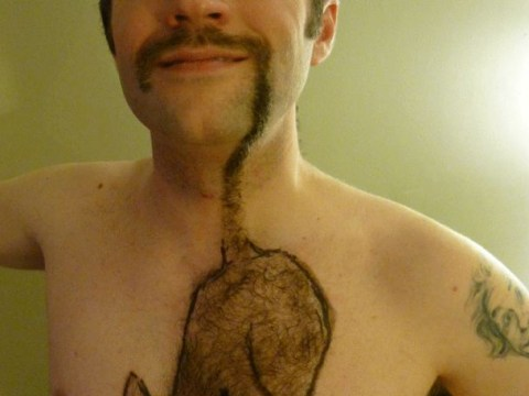 This guy wins Movember: Man grows epic feline fuzz for charity