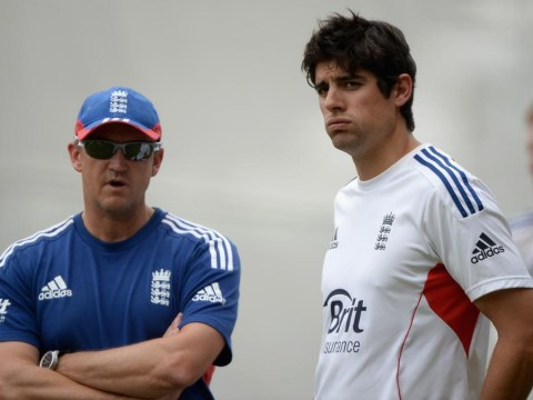The Ashes 2013-14: Coach Andy Flower denies England have lacked bottle for the fight