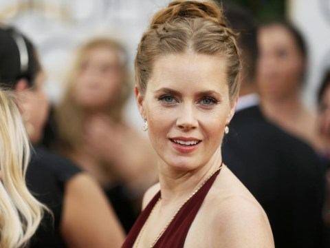 Oscars 2014: Amy Adams left in tears after punching Bradley Cooper