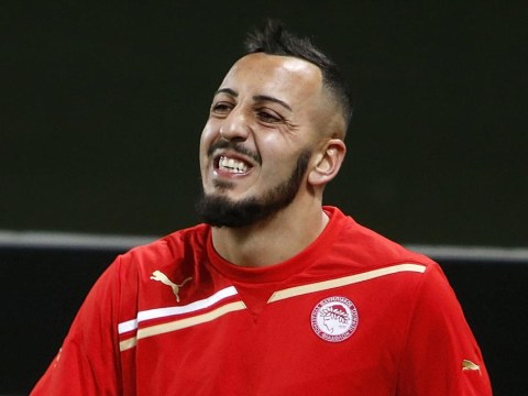 Fulham transfer bid for Konstantinos Mitroglou could provide impetus Fulham need to avoid drop